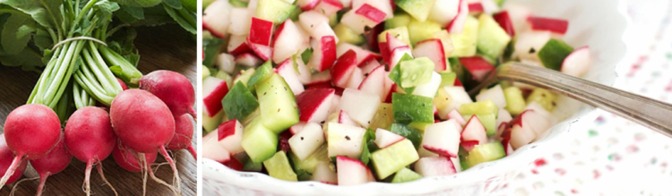 Radish Cucumber Salsa by Jennifer Andrews, Ricotta and Radishes